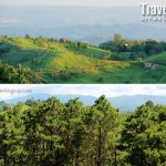 A Taste of Baguio an Hour Away
