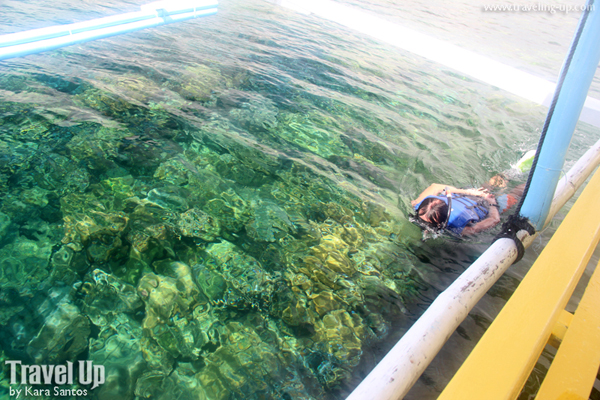 snorkeling at crowning glory reef culion