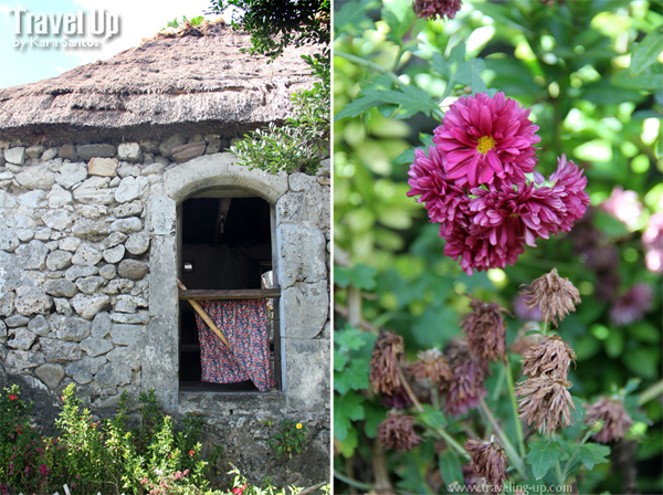 house of dakay flowers batanes
