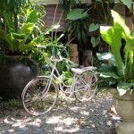 Unique Bike Date Places in Marikina